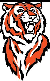Cape Tigers